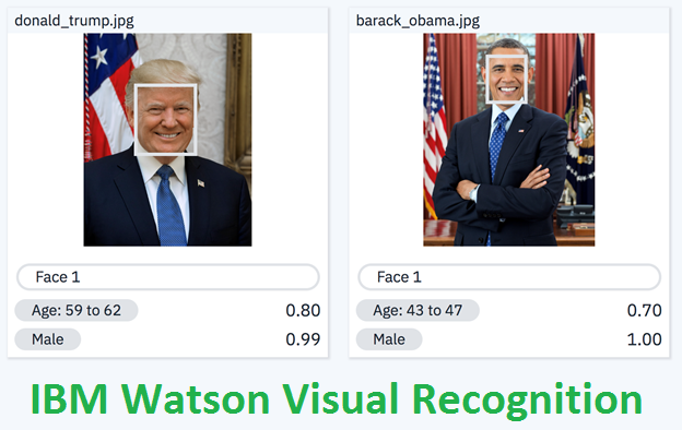 Recognise objects in images with IBM Watson Visual Recognition